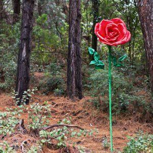 flores gigantes rosa roja
